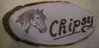 Boxenschild Ponykopf Chipsy ( Rindenbrett )