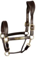 HARRY`S HORSE Ergonomie Lederhalfter Schwarz oder Braun gold mit Gravurplatte und gratis Wunschgravur.    Alle Lieferbar!