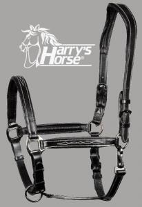 Lederhalfter, Harry´s Horse Ergonomie gepolstert, Schwarz oder Braun Supreme mit Gravurplatte und kostenloser Wunschgravur