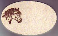 Tür oder Boxenschild Pferde Motiv Ponykopf