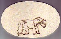 Tür oder Boxenschild Pony - Blume